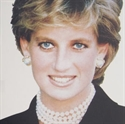 Picture for category Diana Memorial Tartan &amp; Diana Rose Tartan
